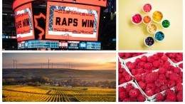 Image for ICYMI: Raptors fans find refuge in Canadian-owned California deli, raspberry recall in Québec, and more