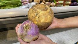 Left: turnip  Right: rutabaga