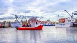 Image for Canadian food DYK: Canada's lobster industry is valued at more than $1 billion annually