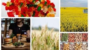 Image for ICYMI: New poll shows that Canadians are no longer as enthusiastic for legal edibles, Canada uses the WTO as a platform to request evidence from China about their canola ban and more