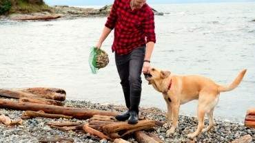 Image for New Fairmont Empress canine ambassador Winston is