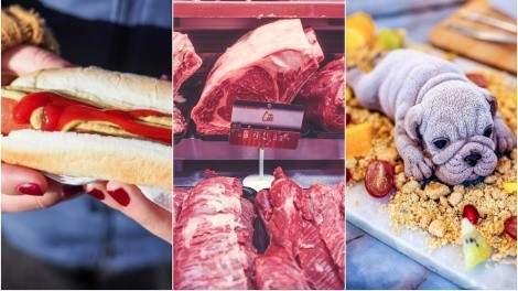 Image for ICYMI: food health violations at Canadian pro sports stadiums, misleading red meat price assumptions for 2019, Richmond puppy desserts and more