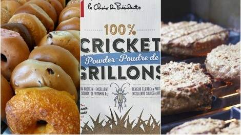 Image for ICYMI: Loblaw starts selling cricket powder, Ottawa bagel shop looks to make Montreal-style bagels, world's first robotic kitchen assistant and more