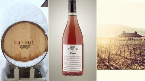 Image for A taste of spring: new wines from British Columbia