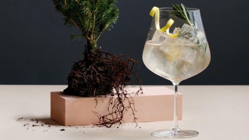 Image for Botanist restaurant's B&T cocktail