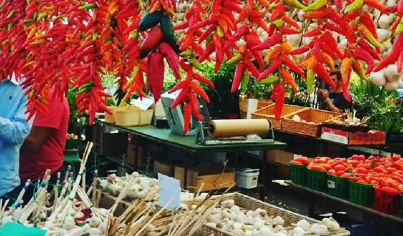 Image for Your guide to Montreal's Jean-Talon Market