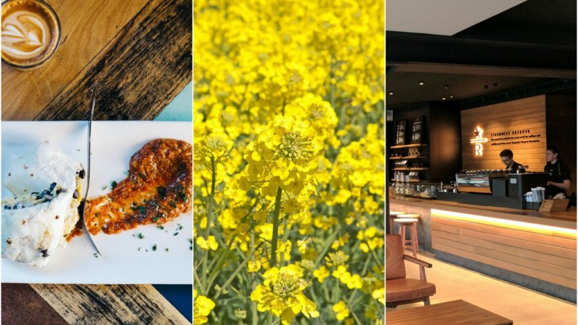 Image for ICYMI: Vancouver Starbucks extends its menu to alcoholic drinks, Alberta farmers expand canola production and a cultural-burrito controversy in food news this week