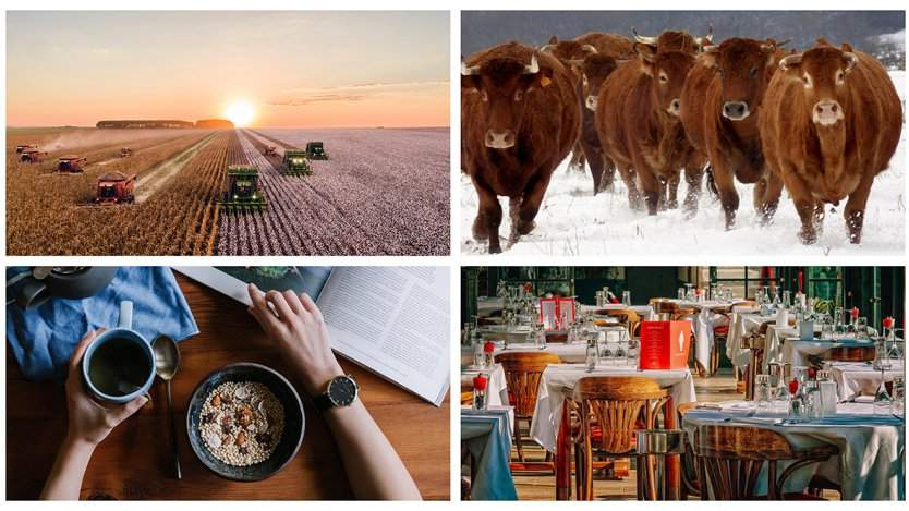 Image for ICYMI: Ricardo Media cancels English-language magazine, Saskatchewan farmer creates wagyu-hybrid, and more