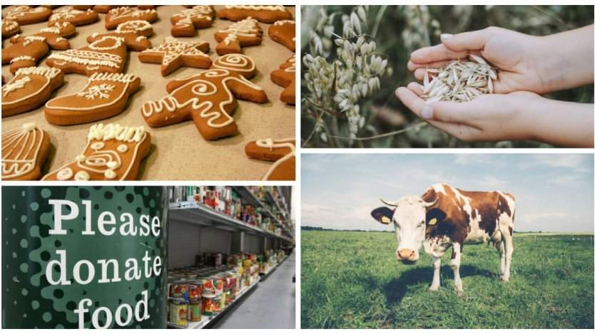 Image for ICYMI: Canada's booming oat milk market, deep-fried maple leafs, and more