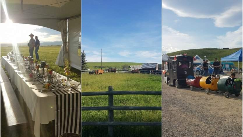 Image for Alberta Open Farm Days appeal to all your senses to let you experience its rural communities
