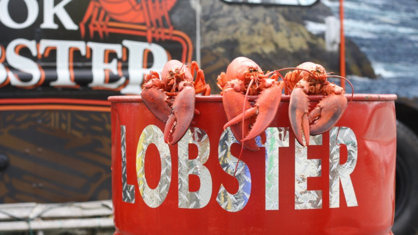 Image for Why East Coasters go wild for winter lobster
