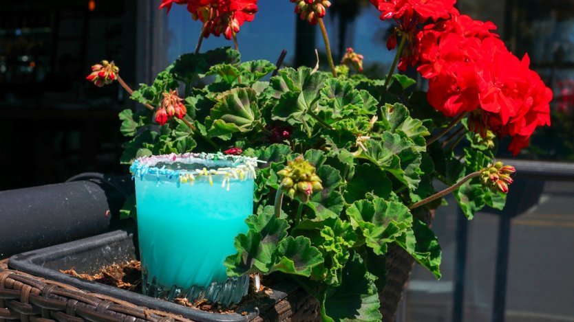 Image for Papi's Seafood and Oyster Bar's One Proud Papi cocktail