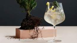 Image for Botanist restaurant's B&T cocktail