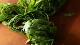 chiffonade basil leaves