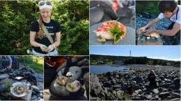 Image for Foraging in Newfoundland with Cod Sounds