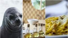 Image for ICYMI: Dispute over consumption of seal meat, Canadians spending on food and top Italian restaurants in Canada in last week's food news