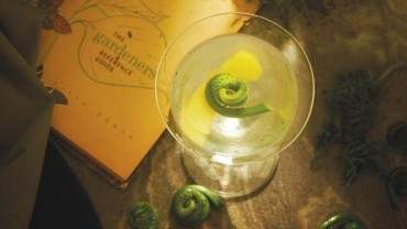 Image for Fiddlehead martini