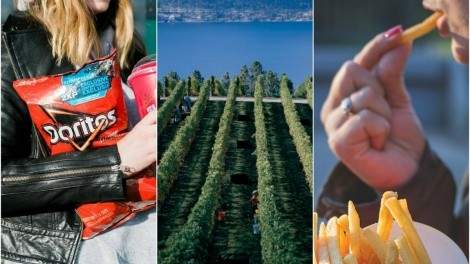 """Image for ICYMI: """"Lady Doritos"""", Alberta government boycotts import of B.C. wine, signs of food addiction and more"""