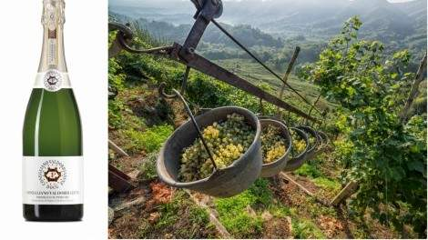 Image for Get to know the prosecco that has the luxury of Champagne without the price tag
