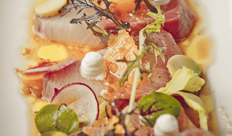 Image for Boulevard's citrus cured hamachi with hearts of palm and yuzu vinaigrette