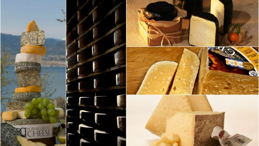 Six regionally famous Canadian cheeses to try