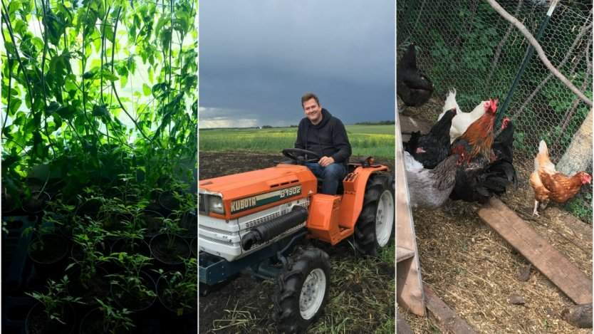 Image for A day in Paradise Fields with Chef Spencer Thompson